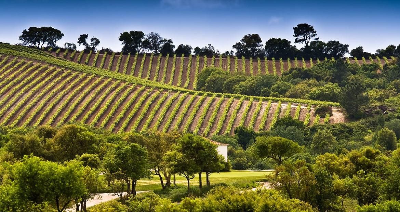 Golf-expedition-golfreizen-golfresort-Dolce-CampoReal-Lisboa-surrounding-nature