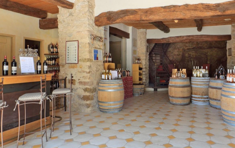 golf-expedition-golf-reis-Frankrijk-hotel-mercure-barbaroux-golf-en-spa-wijnkelder.jpg