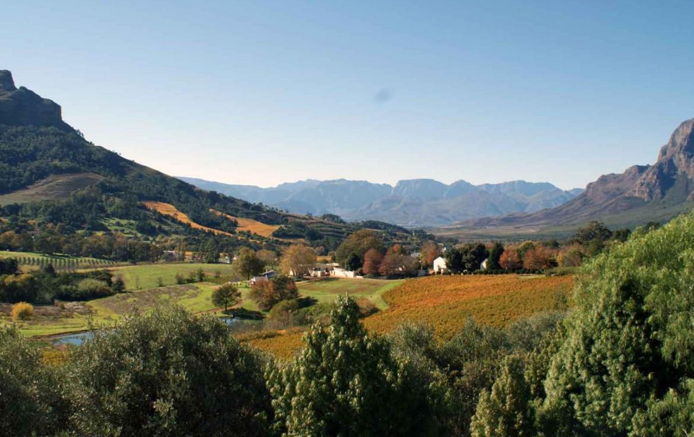 golf-expedition-golf-reis-zuid-afrika-colourful-manor-golfen-in-natuur.jpg