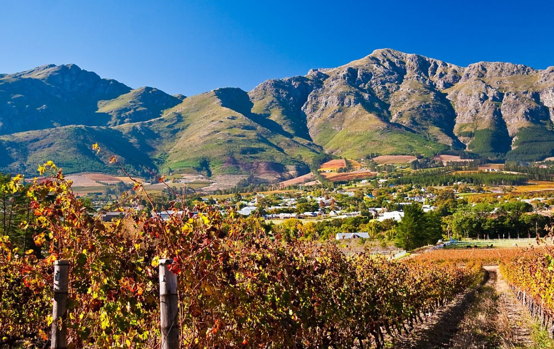 golf-expedition-golf-reis-zuid-afrika-colourful-manor-wijngaard-bergen.jpg