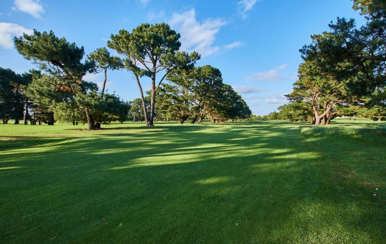 golf-expedition-golf-reizen-frankrijk-regio-aquitaine-biarritz-chateau-du-clair-lune-grasveld-bomen.jpg