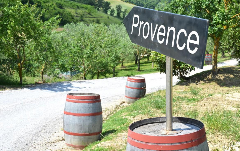 golf-expedition-golf-reizen-frankrijk-regio-provence-chateau-talaud-wijngaard-provence.jpg