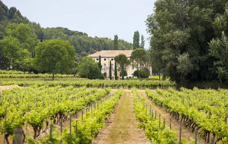 golf-expedition-golf-reizen-frankrijk-regio-provence-chateau-talaud-wijngaard.jpg