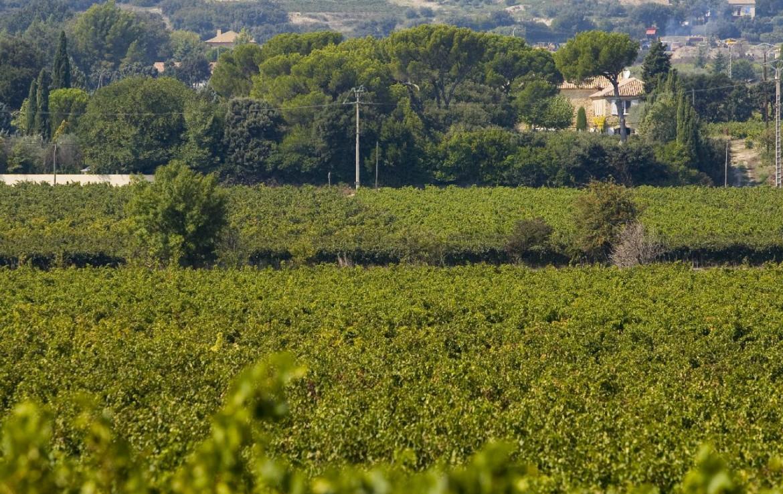 golf-expedition-golf-reizen-frankrijk-regio-provence-domaine-les-serres-natuurlijke-locatie.jpg