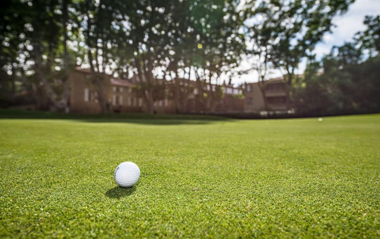 golf-expedition-golf-reizen-regio-provence-Moulin-de-vernegues-golfbal-op-green