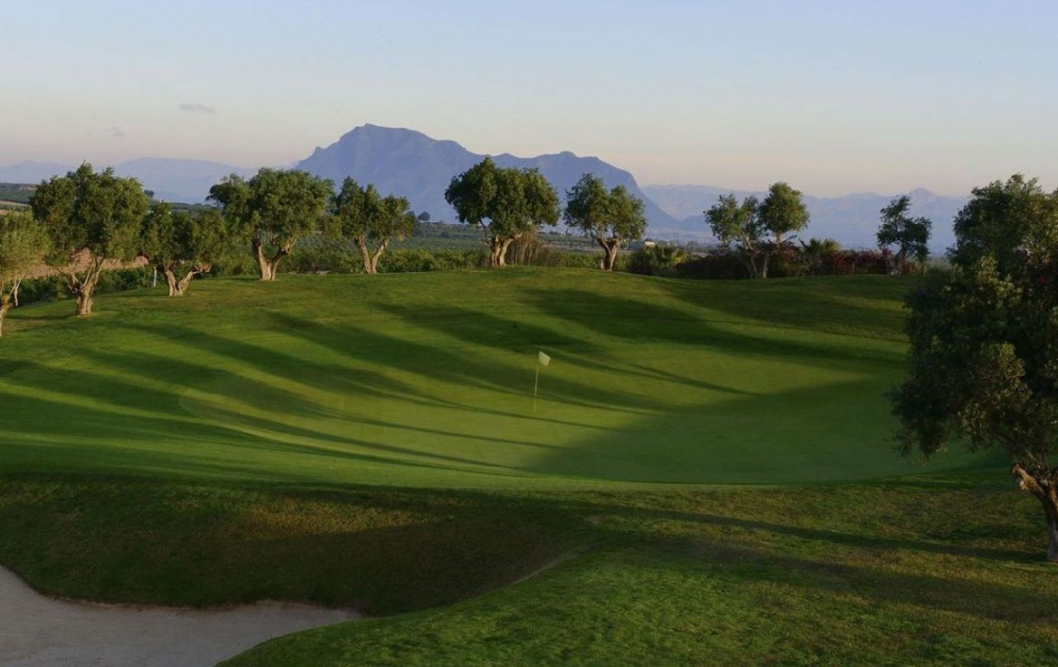 golf-expedition-golf-reizen-spanje-regio-alicante-la-finca-golf-resort-golfbaan-green-in-kuil.jpg