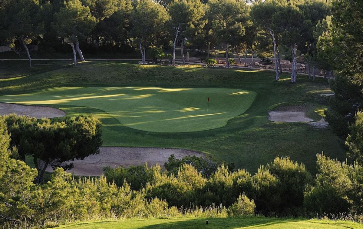 golf-expedition-golf-reizen-spanje-regio-alicante-la-finca-golf-resort-golfbaan-green-natuur.jpg