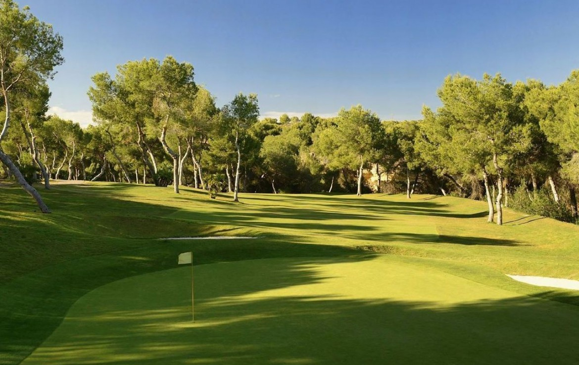 golf-expedition-golf-reizen-spanje-regio-alicante-la-finca-golf-resort-golfbaan-green.jpg