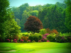 Golfbanen-Belgie-Royal-Waterloo-la-Marache