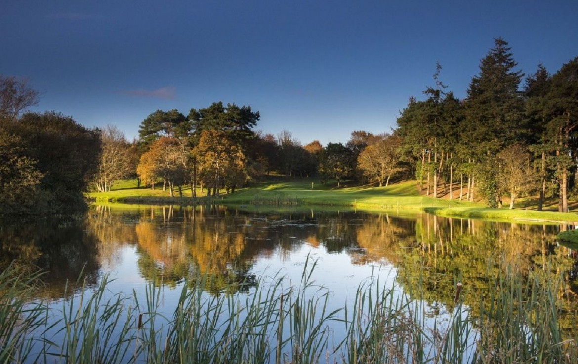 golf-expedition-golf-reizen-ierland-regio-dublin-druids-glen-golf-resort-water-hazard.jpg