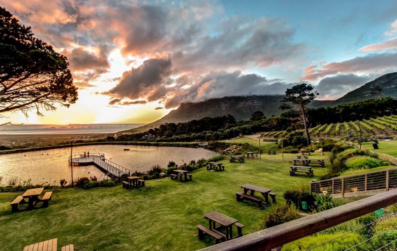 golf-expedition-golf-reizen-zuid-afrika-wijngaard-tuin-bankjes.jpg